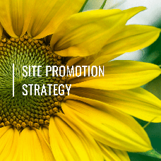 Site promotion strategy